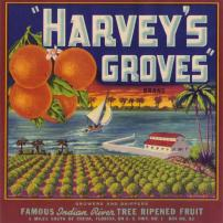 Vintage ad for Harvey's Groves